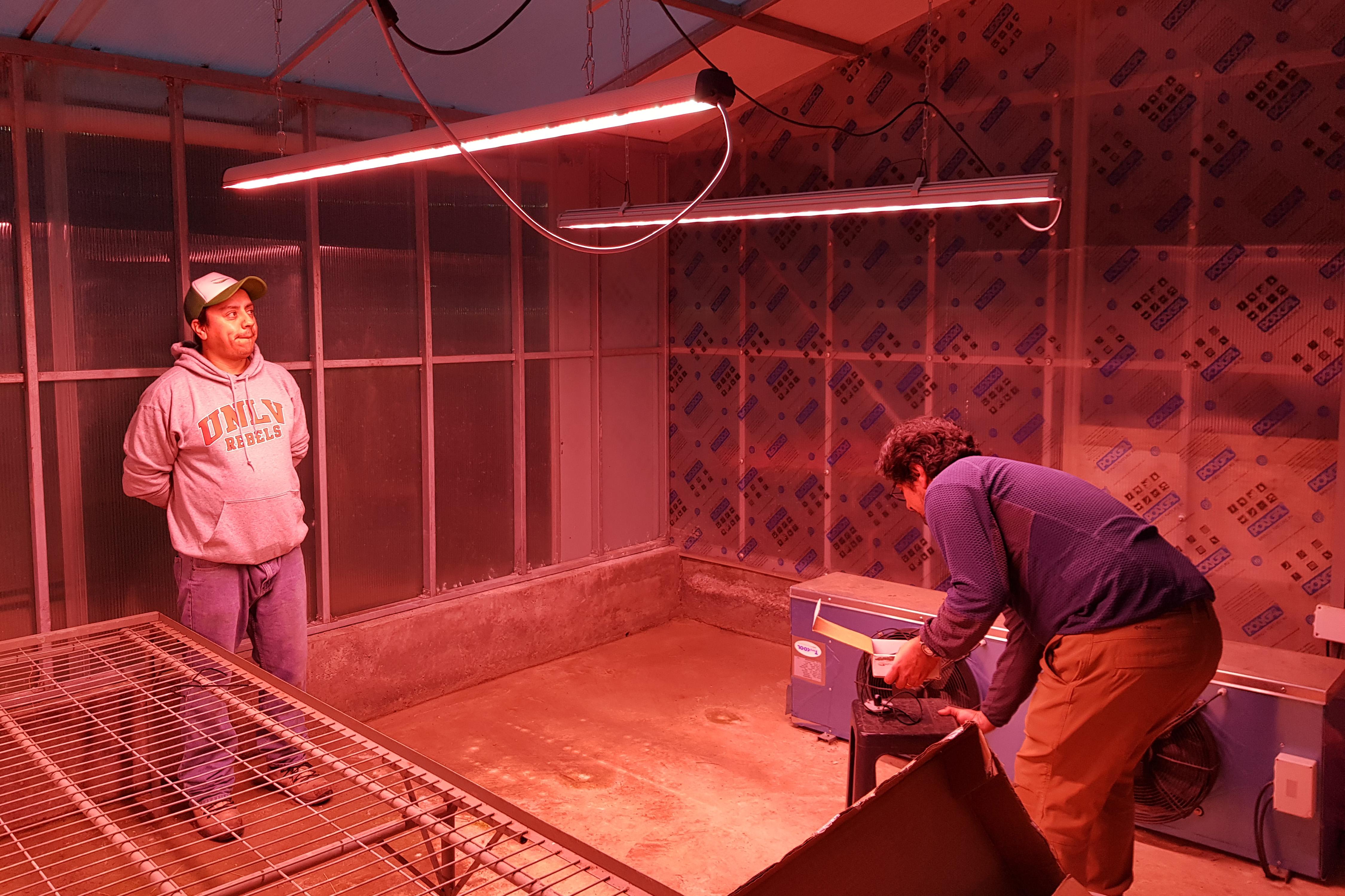https://www.advanticsys.com/wp-content/uploads/2018/11/greenhouse-inia-installation2.jpg